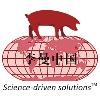 Леманская конференция по свиноводству в Китае