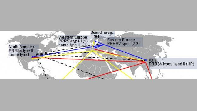 Глобальное распространение и гипотетический межконтинентальный перенос вируса РРСС