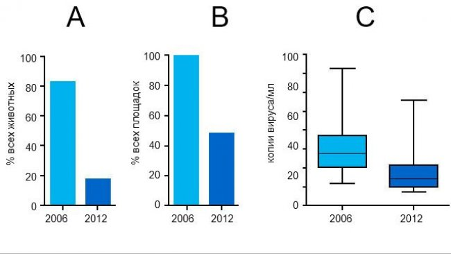 Уровни виремии ЦВС-2 в 2006 и 2012 годах