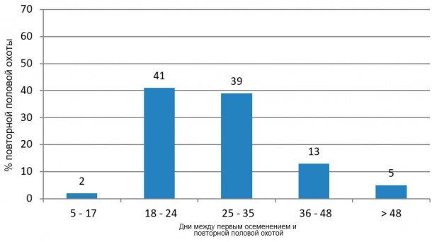 Рисунок 3. Анализ повторной половой охоты в благоприятный период  (январь-июнь и октябрь-декабрь 2015).
