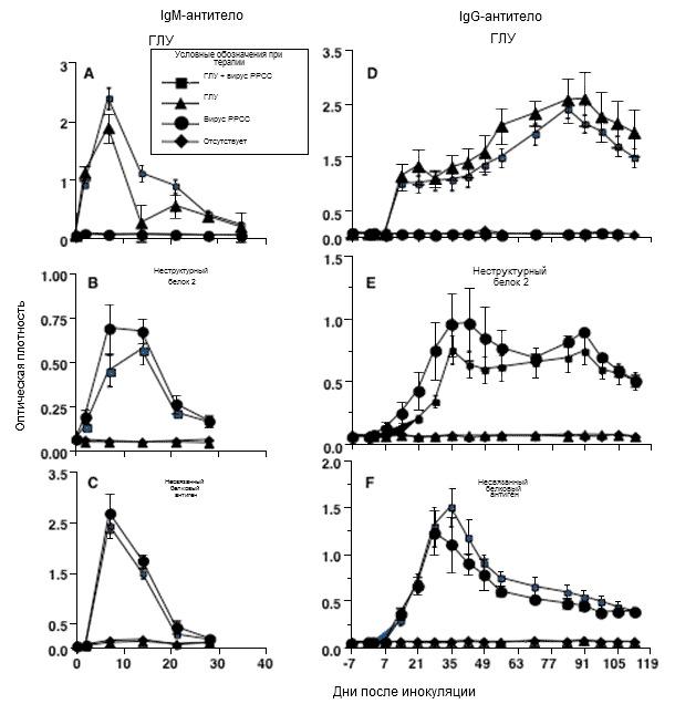 Динамика гуморального иммунного ответа на заражение вирусом РРСС типа 2