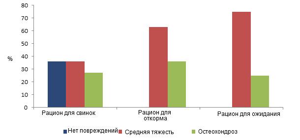 Распространение повреждений копытец у свинок в зависимости от рациона кормления в фазу роста.
