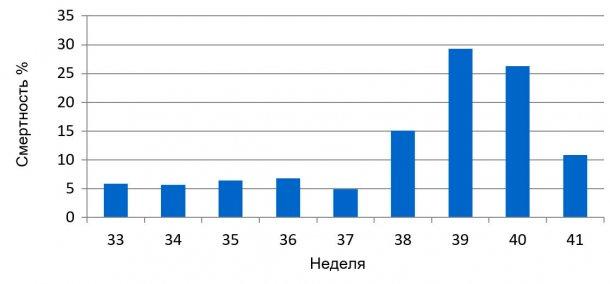 График 1. Процент еженедельной смертности перед отъемом, до и во время ЭДС.