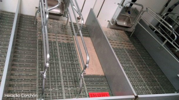 Загон для опороса с пластмассовым полом для поросят и свиноматки. Пол под свиноматкой спереди является более плотным.