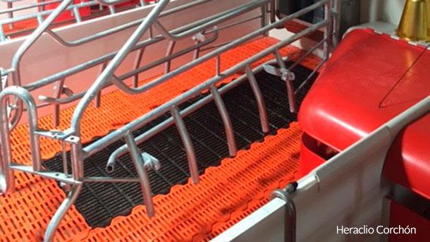 Наиболее часто используемой комбинацией являются пластиковые планки для подсосных поросят и чугунная конструкция для свиноматки.