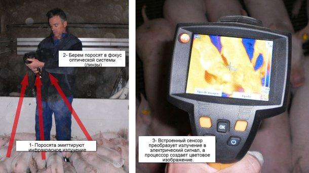 Как работает термографическая камера?