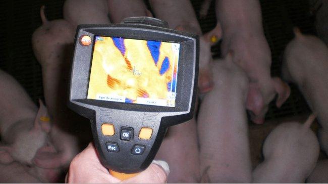 Термографическая камера