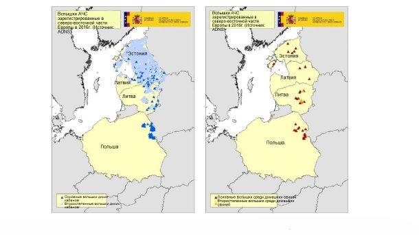 Карта вспышек, зарегистрированных в Эстонии, Латвии, Литве и Польше в 2016г. (Источник:RASVE-ADNS)
