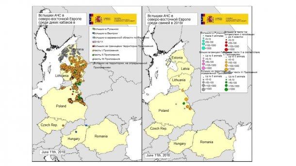 Карта вспышек, зарегистрированных в Эстонии, Латвии, Литве, Польше Чехии и Румынии в 2018г. (Источник:RASVE-ADNS)