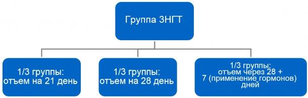 Рисунок 4. Процесс перехода с групповой 3-недельной технологии (3НГТ)на 1-недельную.