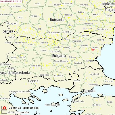 <p>АЧС в Болгарии</p>