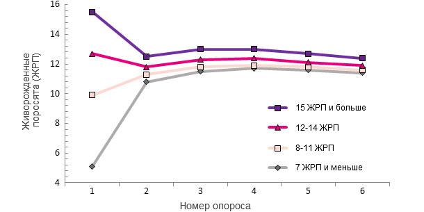 Показатели свиноматки за весь период ее использования, в привязке к числу ЖРП при первом опоросе.