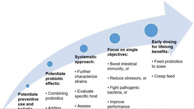 Рисунок 2. Стратегии по повышению пользы от применения пробиотиков на ранних этапах жизни.