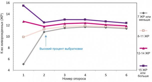 Диаграмма 1. Продуктивность свиноматки за период ее использования, в зависимости от количества родившихся поросят.