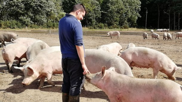 Отношения между животным и человеком могут складываться совершенно по-разному.