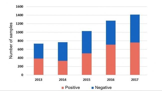 Рисунок 1. Выявление H. parasuis помощью ПЦР в системных пробах, полученных в 2013-2017 г.г. База данных ISU, 2018