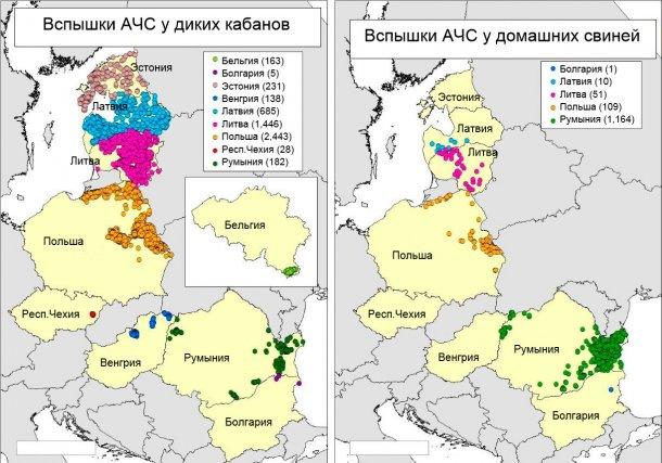 Карта вспышек в Бельгии, Болгарии, Эстонии, Венгрии, Латвии, Литве, Польше, Республике Чехия и Румынии в 2018 г. (Источник: RASVE-ADNS)