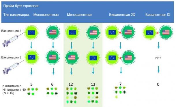 Рис. 2. Влияние традиционной и гетерорлической прайм-буст схем вакцинаций на спектр анти-H3N2 иммунного ответа. Европейские и Североамериканские штаммы свиного гриппа H3N2 указаны различными флажками. Плазма, отобранная спустя 14 дней после второй вакцинации, была протестирована против 15 антигенно отличных вирусов, включая вакцинные штаммы. Цифры показывают количество вирусов, против которых титры HI антител были ≥ 40.