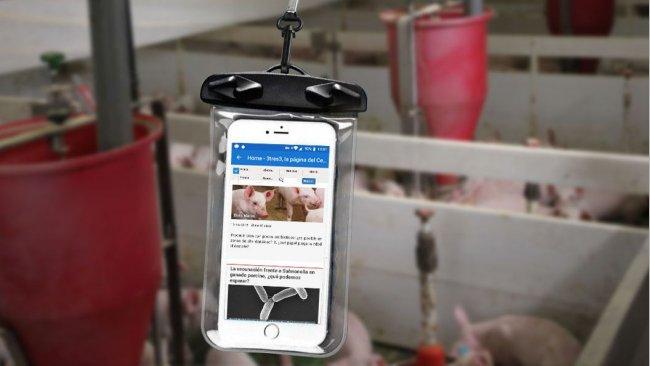 Мобильный телефон внутри водопроницаемого пакета