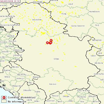<p><span><span><span><span>Появление АЧС в Сербии</span></span></span></span></p>