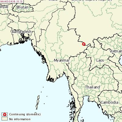 <p>АЧС добралась до Мьянмы</p>