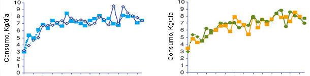 Динамика среднесуточного потребления корма свиноматками во время перехода с одного корма на другой в соответствии с рационом