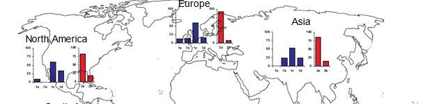 География превалентностей разных штаммов TTSuV