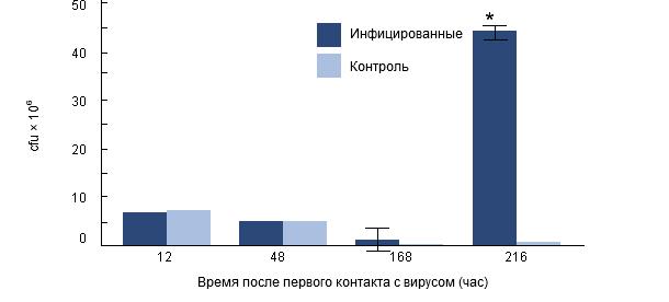 Интрацеллюлярная выживаемость H. parasuis в альвеолярных макрофагах свиней, предварительно инфицированных РРССв